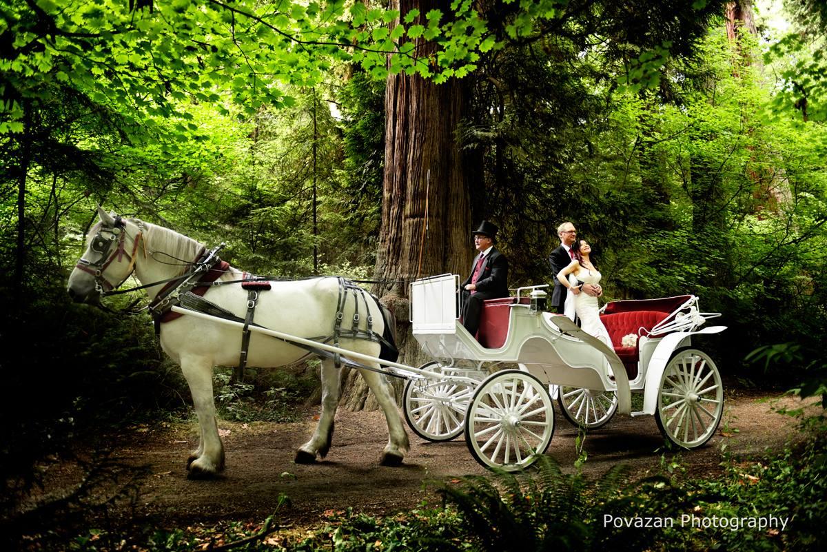 Canada-place-tea-house-wedding